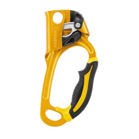 Petzl Acsension